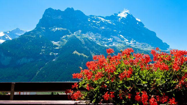 Hotel Kreuz Und Post Grindelwald